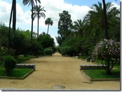 Jardines de Murillo (20)