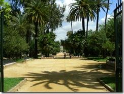 Jardines de Murillo (8)